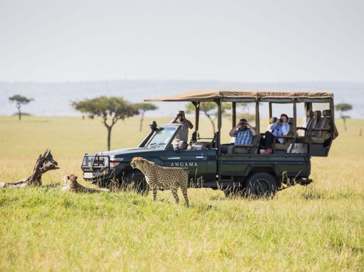 Kenya 7 days – 6 nights